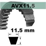 AVX11,5x695