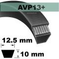 AVP13x2250 Version +