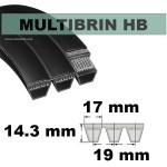 HB63x2 Brins