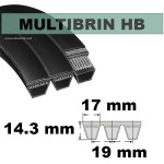 HB64x6 Brins