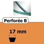 PERFOREE B 17 x 11 mm