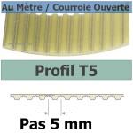 T5-25