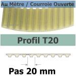 T20-25