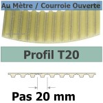 T20-50