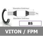 BS6.60x11.00x1.00 / 304 FPM
