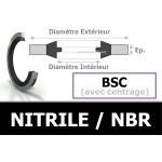 BSC18.16x25.40x2.34 NBR
