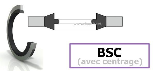 BAGUES BSC