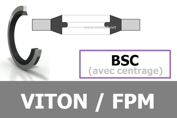 BAGUES BSC FPM / VITON
