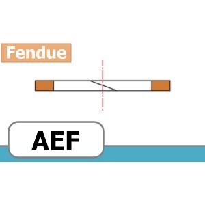 BAGUE ANTI-EXTRUSION FORME AEF
