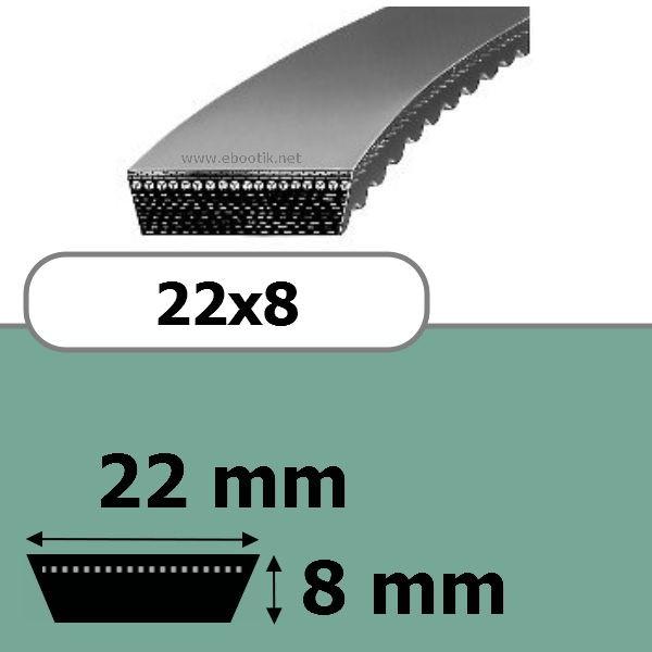 COURROIE VARIATEUR 22x8x1250