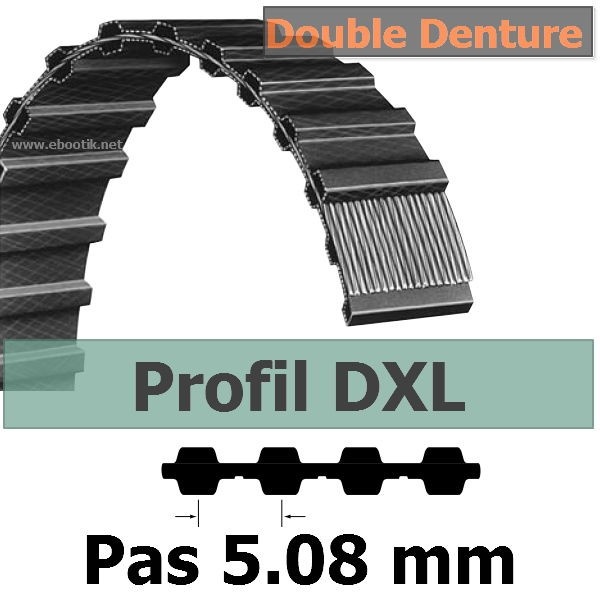 250XL037 DOUBLE DENTURE LARGEUR 9.52 mm