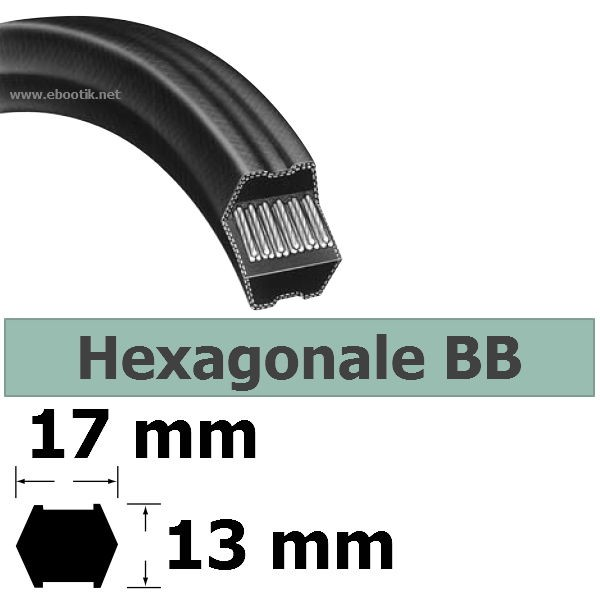 COURROIE HEXAGONALE BB125
