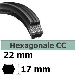 COURROIE HEXAGONALE CC105 / LARGEUR 22 mm
