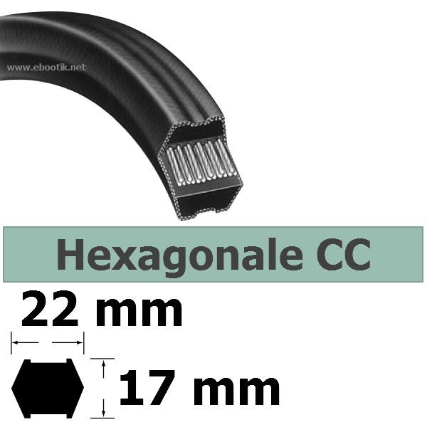 COURROIE HEXAGONALE CC165 / LARGEUR 22 mm
