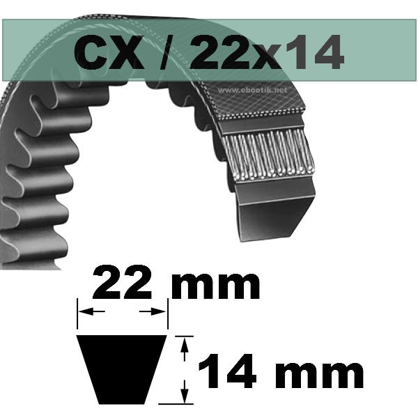 COURROIE TRAPEZOIDALE CRANTEE CX52
