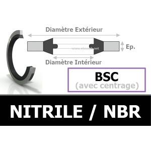 BAGUE BSC 12.70x19.00x1.50 BS12 / 867 NBR