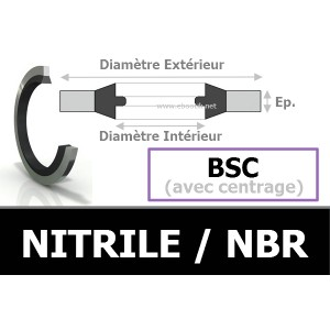 BAGUE BSC 14.70x22.00x1.50 BS14 / 868 NBR
